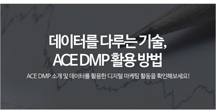 데이터를 다루는 기술, ACE DMP 활용 방법