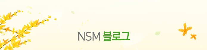 NSM 블로그
