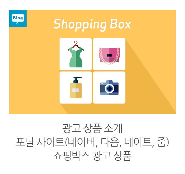 광고 상품 소개 포털 사이트(네이버, 다음, 네이트, 줌) 쇼핑박스 광고 상품